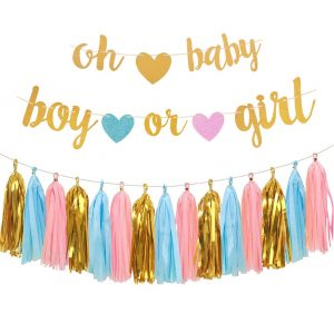 party banners for gender reveal party on a budget
