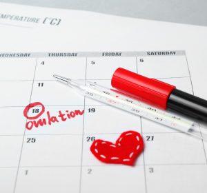 ovulation tips